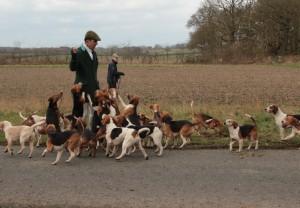 Tim Rogers and the Per Ardua Beagles
