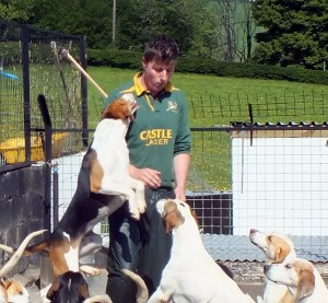 David demonstrating the rapport he has with his hounds.