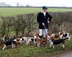 Mark Guy, Joint Master and Huntsman with the East Lincs. Basset Hounds