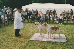 Brecon and Tallybont Puppy Show