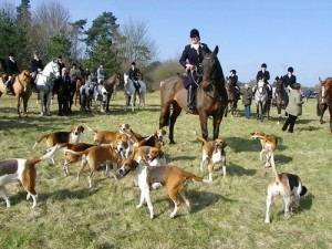 Lydia Harvey at a meet of the Eastern Harriers