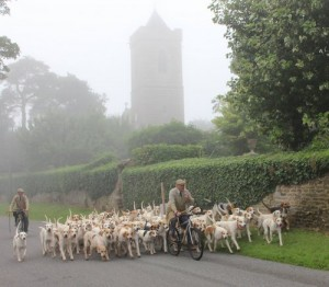 Cottesmore Hounds passing Ashwell Church close to the kennels.