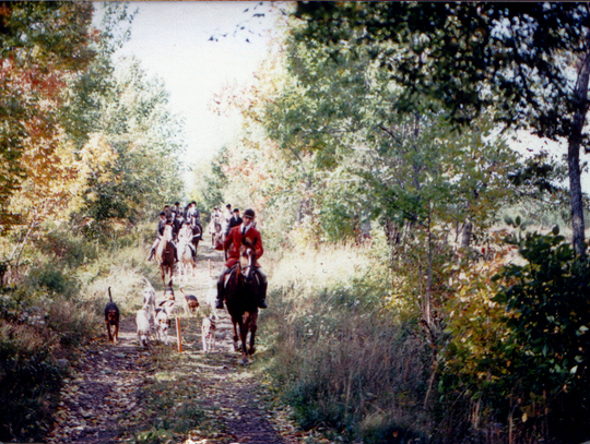 Autumn hunting in Windsor