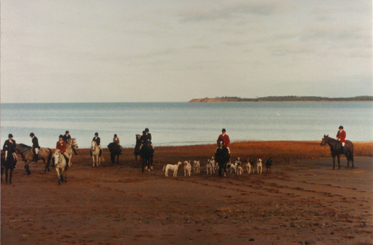 Hounds on the beach at Starrs Point with Ms Nancy Marshall to the left of hounds and on the right, the late Allister Marshall MFH
