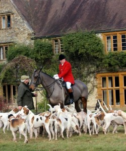 Micky Wills, Grafton Huntsman with hounds at a recent meet at Steane Park near Brackley