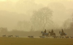 The Heythrop Hounds Hacking Home