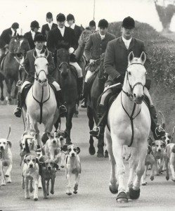 Me hunting hounds with First Whipper In, Stephen Swan and Joint Master and Amateur Whipper in Jack Jiggens behind.