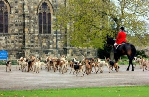 Hounds arriving for the Meet at Auckland Castle