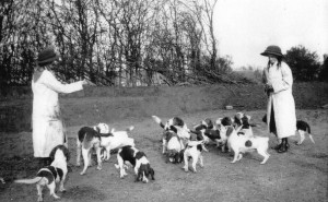Letttice and Dorothy Burns-Hartopp with the Dalby Hall Bassets in 1911
