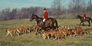Melvin hunting hounds