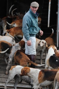 Paul Roberts Huntsman of the Cambridgeshire with Enfield Chace loading his Hounds up at the end of a long morning from Tetworth